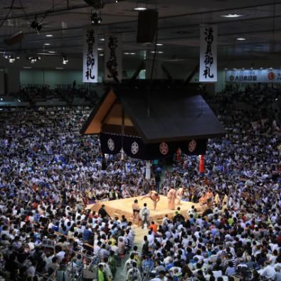 名古屋の夏の風物詩!向正面から観戦する大相撲名古屋場所メインイメージ
