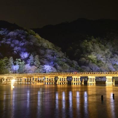 京都嵐山・花灯路~灯りと花で彩る京都初冬の風物詩~メインイメージ
