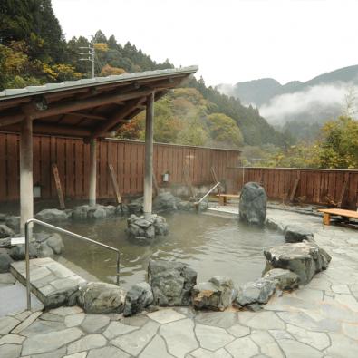 温泉ツアー第18回「森の都温泉・ならここの湯」と可睡斎のお雛さんメインイメージ