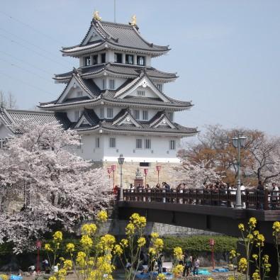お城と桜が一緒に楽しめる!怒涛の東海7名城さくら巡りメインイメージ