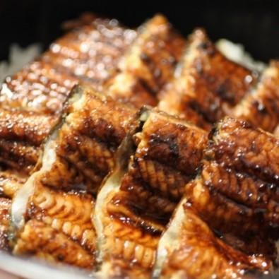 【乗合】名古屋港ランチクルーズ≪あつた蓬莱軒・ひつまぶしの昼食≫メインイメージ