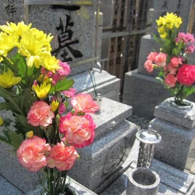 【まちあるき】覚王山・歴史の記念碑と偉人たちの墓をめぐる 自然派イタリアンの食事メインイメージ