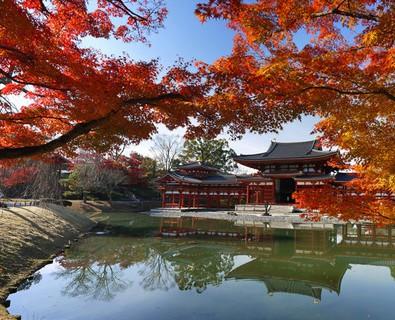 W京都紅葉狩り~世界遺産『醍醐寺』とライトアップ夜間特別拝観の世界遺産『宇治平等院』~メインイメージ