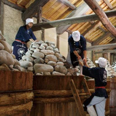 岡崎で学ぶ八丁味噌の歴史とあったかはふはふ特別味噌料理メインイメージ