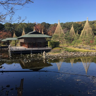 限定20席 水上のお茶室貸切!イス席で気軽に楽しむお茶体験と、料亭賀城園の季節の会席料理メインイメージ