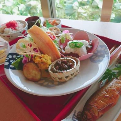 【人気につき増席!】名産地で食べる れんこんたっぷり特別料理とコスモス畑散策メインイメージ