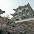 32 伊賀上野城
