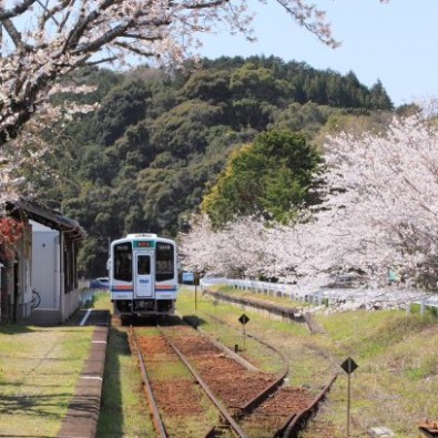 """湖畔の会員制高級リゾート『KIARA』で楽しむランチと、ローカル列車""""天浜線""""メインイメージ"""