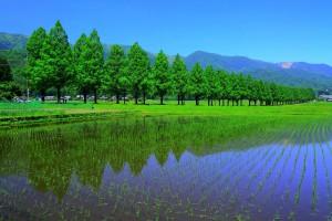 22マキノ高原温泉ーーーーー