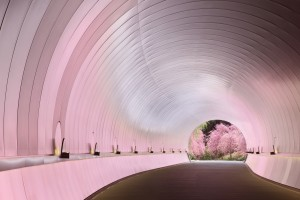 43トンネル桜色
