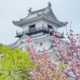 45永福寺 掛川城
