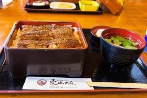 higashiyamaunagi