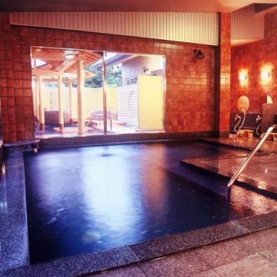 名旅館温泉♨ツアーおごと温泉「びわこ緑水亭」~1200年の歴史、琵琶湖から風を受けて、ph9、そして新緑のメタセコイア並木も!~メインイメージ